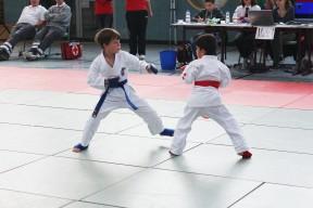 Theo (blau)